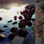 【釣行】12/11おかっぱり釣果-冬の中川水系-