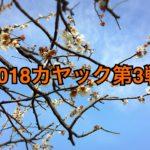 【釣行】3/15カヤック第3戦-おさかな見失いました-