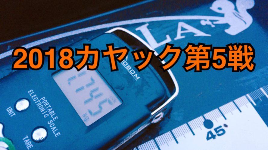 【釣行】3/21カヤック第5戦-雪降る前に釣っておこ-
