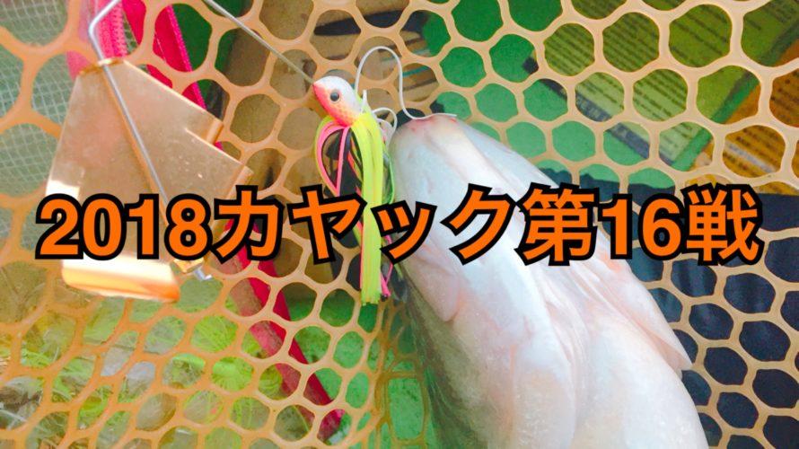 【釣行】カヤック第16戦-ようやくバズシーズン開幕-