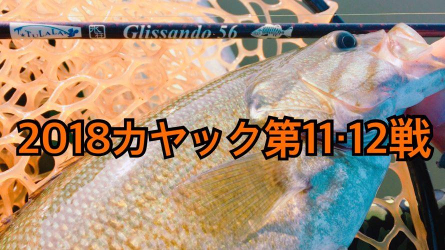 【釣行】カヤック第11・12戦-色々ニアミスで凹む-