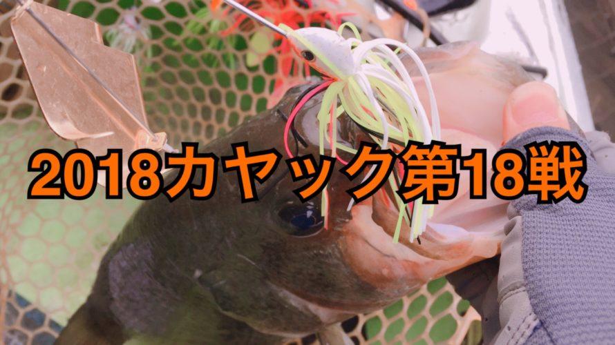 【釣行】カヤック第18戦-不完全燃焼だけどボルグリでナイスワン-
