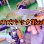 【釣行】カヤック第23戦-ダメダメDAY-