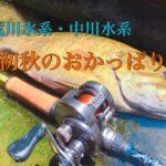 【釣行】2018年9月 荒川・中川水系おかっぱり-色々テストして遊ぶ-