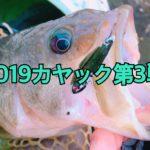 2019年カヤック第3戦-鉄板修行で初ラージ-