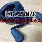 【カスタム】18バスライズ…最終形態へ-最安リールのフルカスタム-