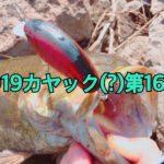 【釣行】カヤック(?)第16戦-オカッパリでデカスモ…笑-