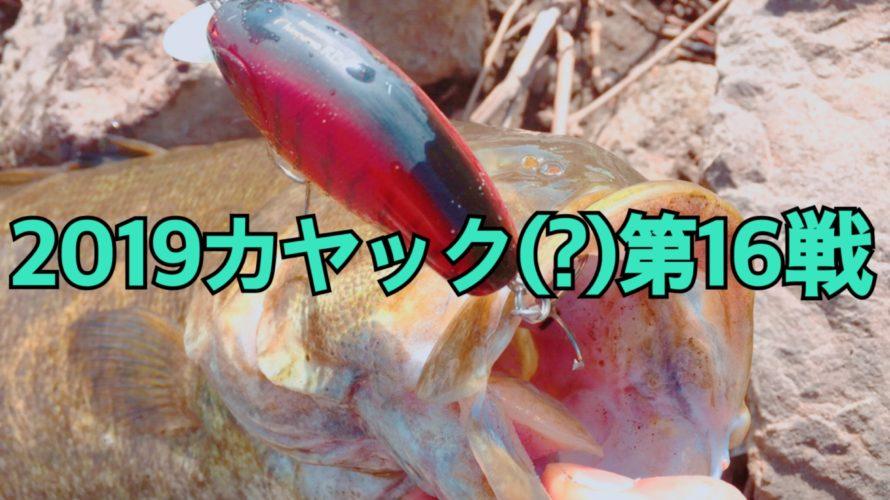 【釣行】2019年カヤック(?)第16戦-オカッパリでデカスモ…笑-