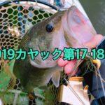 【釣行】2019年カヤック第17・18戦-ワイヤーベイトの季節到来?-