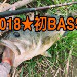 【釣行】1/20タイダルリバーおかっぱり-2018★初バス-