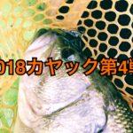 【釣行】3/17カヤック第4戦-リベンジ後の悪夢-