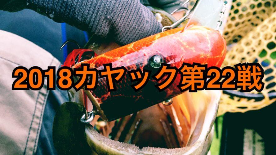【釣行】カヤック第22戦-苦節3年、Gバドで50UP-