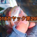 【釣行】カヤック第29戦-猛暑の中で試行錯誤-