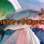 【釣行】カヤック第36・37戦-冬の気配でシーズンオフ?-