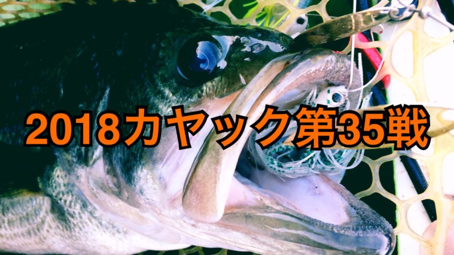 【釣行】カヤック第35戦-秋のスーパークオリティ50UP捕獲!!-