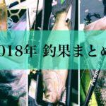 【総括】2018年釣果まとめ&3本の50UPの話