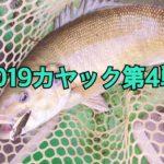 2019年カヤック第4戦-強風極寒メタル修行-